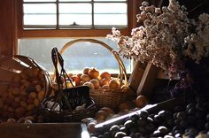 canaan farms by simple tess, via Flickr