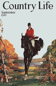 1920 EQUESTRIAN COUNTRY SPORT JUMPING STALLION FOX HUNT HORSE ART PRINT 318703
