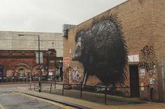 ROA Igel Shoreditch London East End Brick Lane hedgehog #ROA #streetart
