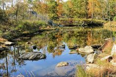 Autumn pond on Billy Goat Trail by the Potomac River