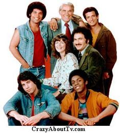 Welcome Back Kotter (1975–1979)  Cast and history: http://www.imdb.com/title/tt0072582/  Theme music: http://youtu.be/QVS3WNt7yRU