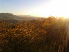 #Autumn in #Reutlingen #Germany #Hohenzollern