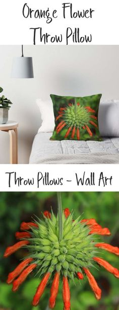 A throw pillow with an image of an orange Lion's Mane Wildflower. Buy it here: https://www.redbubble.com/people/rhamm/works/21806976-petals-on-a-cone-flower?asc=u&p=throw-pillow&rel=carousel