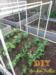 Fabulessly Frugal: DIY Garden Trellis!!