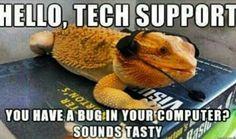 Hehe...bug...                                                                                                                                                                                 More