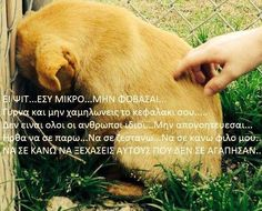 Kindness To Animals, Greek Quotes, Love Words, Get Well, Animal Kingdom, Real Life, Dog Lovers, Best Friends, Cute Animals