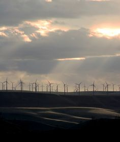 One can see these wind turbines throughout eastern WA. This photo was taken at dusk on Hwy 12 from Walla Walla, WA America Washington, Western Washington, Seattle Washington, Washington State, North Dakota, North America, Walla Walla Washington, Wind Farms, River I