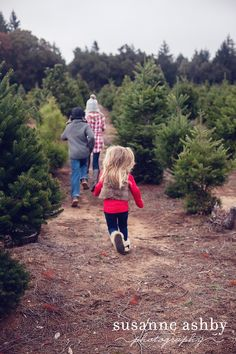 I used to visit a Christmas tree farm with my own family every year when I was growing up.  We'd choose and cut down our tree.