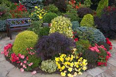 Flowers and foliage in the late summer garden (September 2) by Four Seasons Garden, via Flickr