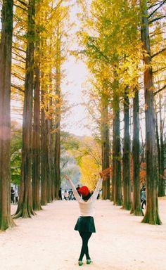 30 Photos That Prove the South Korea Autumn Just Won at Life South Korea Travel, Asia Travel, Nami Island Autumn, Nami Island Korea, Autumn In Korea, Fall Photos, Places To See, Beautiful Places, Korean Fashion