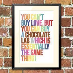 Chocolate Labrador love :)