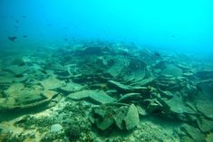 BlueMed Program Aiming to Make Greek Shipwrecks 'Visitable' Marine Archaeology, Diver Down, Greece Islands, Shipwreck, Archaeological Site, Under The Sea, The Locals, Underwater, Tourism