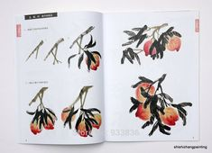 Chinese painting book learn to paint peach pine tree birds flowers brush ink art Oriental Flowers, Japanese Drawings, Chinese Brush, Bird Tree, China Art, Painted Books, Chinese Painting, Learn To Paint, Ink Painting