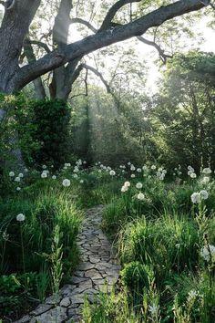 Woodland, garden, shade, HOME & GARDEN: 40 inspirations pour un jardin anglais Moon Garden, Dream Garden, Garden Paths, Garden Landscaping, Backyard Walkway, Landscaping Ideas, Backyard Ideas, Landscaping Company, Backyard Projects