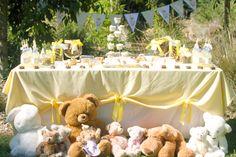 Teddy Bear Picnic table