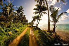 Samoa - Upolu, driving on Samoa Photo by Katkacestuje