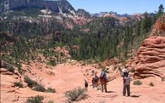 backpacking hints and tips for the trail Backpacking Tips, Hiking Tips, Zion National Park, National Parks, Outdoor Stuff, Hiking Backpack, Outdoor Recreation, Backpacker, Survival Tips