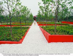 Colourful fiberglass planter beds at Qinhuangdao Botanic Garden, Hebei, China (by Turenscape)