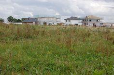 Gemeinde Ellerhoop: Vorgezogene Vergabe der Grundstücke