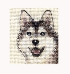 HUSKY DOG ~ Full counted cross stitch kit - with all materials in Crafts, Cross Stitch, Cross Stitch Kits | eBay