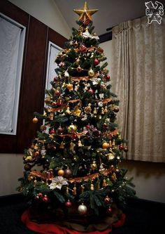 diy christmas tree topper , christmas decorations, crafts, home maintenance repairs, ponds water features, repurposing upcycling, seasonal holiday decor