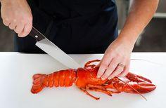 hummer Hummer, Chutney, Lchf, Shrimp, Food, Juice, Pictures, Lobsters, Hama