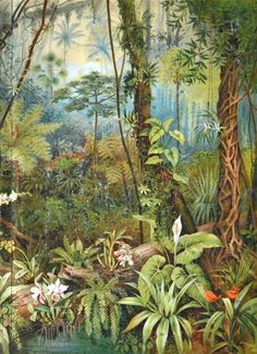 TROPICAL PLANTS by Susan Robertson on Etsy