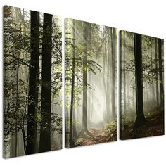 Light in Dense Fall Forest with Fog - Landscape Canvas Art Print in. wide x 28 in. high - 3 panels), Multi (ink and wood) Forest Decor, Forest Theme, Canvas Art Prints, Canvas Wall Art, 3 Piece Art, Best Canvas, Forest Painting, Landscape Artwork, Picture Wall