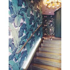 Martinique (banana leaf) wallpaper, as seen in The Beverly Hills Hotel.