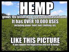 legalizeact:    Act Now