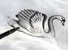 Une illustration fine pour sublimer vos jolis faire-part de mariage. Illustration et photographie ©Printyourlove. Rendez-vous sur http://printyourlove.fr http://www.alittlemarket.com/faire-part/fr_faire_part_chic_elegant_moderne_cygne_blanc_dore_mariage_original_raffine_-9454023.html