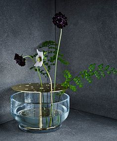 ikebana vase is designed by jaime hayon as part of the new accessories line by the republic of fritz hansen. this beautiful vase is made of blown glass and a freestanding brass structure that holds the flower.