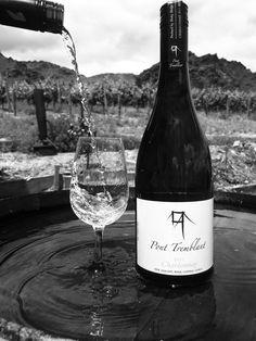 Award winning Central Otago Pinot Noir NZ, and buy wine online. All day cellar door platter and wine tasting. Buy Wine Online, Wine Photography, Pinot Noir, Wine Tasting, Drinks, Bottle, Cheers, Budget, Club