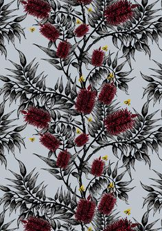 Bees In The Bottlebrush Wallpaper | Funky Wombat Textiles. Soft blue. $308 for 10m