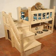Awesome dog bed loft bed!
