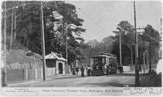 Tinakori Road, Wellington, showing an electric tram by the entrance to the Botanical Gardens. Photograph taken circa by an unidentified photo. Old Pictures, Old Photos, Wellington New Zealand, The Hutt, Botanical Gardens, Electric, Outdoor, Buses, Entrance