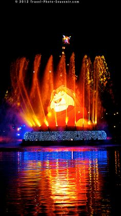 The Lion King, Disney Sea Parade - Fantasmic in Tokyo Disney Sea, Japan