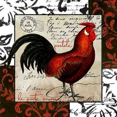 Europa Rooster II (Mindy Sommers)