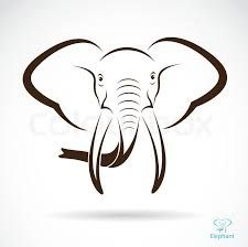 Find Vector image of an elephant head , illustration - vector stock vectors and royalty free photos in HD. Cow Vector, Eagle Vector, Fish Vector, Vector Vector, Vector Stock, Cactus Vector, Bee Images, Feather Vector, Cupcake Drawing