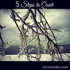 Frazzled? Tired? Worn out from the Christmas craziness? Try this: Five Steps to Quiet.