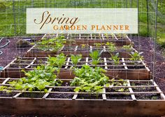 Garden Planner: Spring Planting Guide. Detailed garden planner with a printable spring garden worksheet and tips for creating an instant garden.