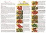 Le qualità di pomodori e peperoni Ortomio