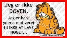 Garfield Quotes, Quote Of The Week, Sarcastic Quotes, My Mood, Funny Signs, Funny Faces, Wise Words, Quotations, Poems