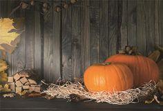 Grey Wood Halloween Fall Pumpkin Straw Photo Backdrop - 8X8FT(2.5X2.5M)
