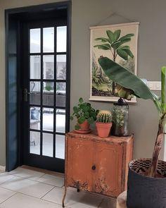 Botanisch hoekje in de keuken , kastje is een oud Frans keukenkastje , bananen plant snakt naar zon. Nog even kan hij weer naar buiten .