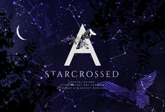 Starcrossed - Starry Design Set by OpiaDesigns on @creativemarket