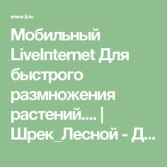 Мобильный LiveInternet Для быстрого размножения растений.... | Шрек_Лесной - Дневник Шрек_Лесной |
