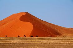 The Namib Desert makes an impressive backdrop to the Desert Express Bryce Canyon, Dune, Namib Desert, World Images, Train Rides, Holiday Travel, Continents, Monument Valley, Scenery