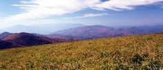 max patch, NC is simply one of hte most beautiful places i've had the pleasure of visiting- just a short hike and lots of great trails to explore or views to ponder