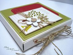 Gorgeous Mini Album in a Box... Love the idea of this =)